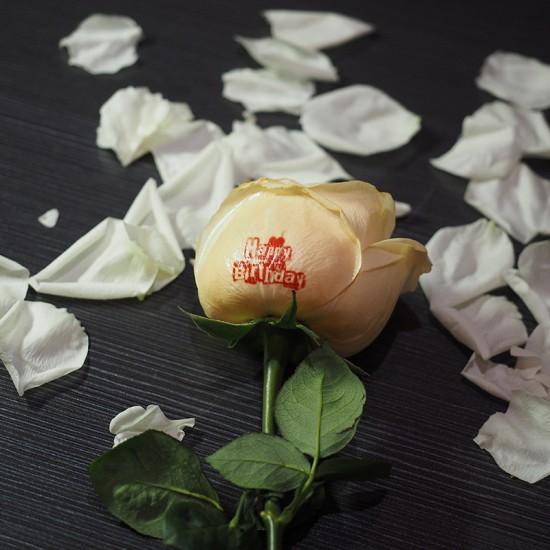 Rose Flower Printer